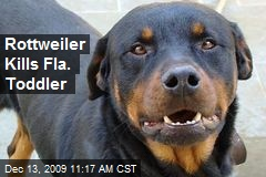 Rottweiler Kills Fla. Toddler