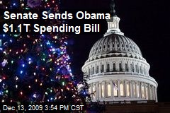 Senate Sends Obama $1.1T Spending Bill