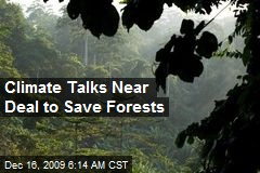 Climate Talks Near Deal to Save Forests