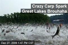 Crazy Carp Spark Great Lakes Brouhaha
