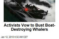 Activists Vow to Bust Boat-Destroying Whalers