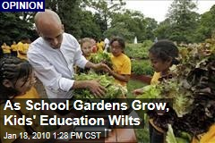 As School Gardens Grow, Kids' Education Wilts