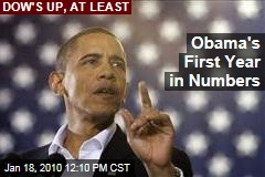 Obama's First Year in Numbers