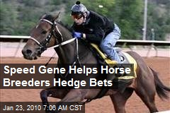 Speed Gene Helps Horse Breeders Hedge Bets