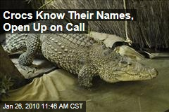 Crocs Know Their Names, Open Up on Call