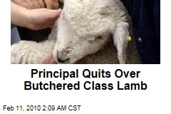Principal Quits Over Butchered Class Lamb