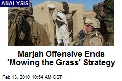 Marjah Offensive Ends 'Mowing the Grass' Strategy