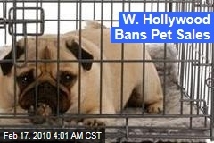 W. Hollywood Bans Pet Sales