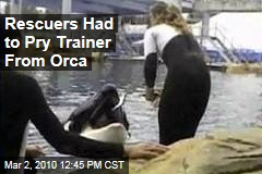 Rescuers Had to Pry Trainer From Orca