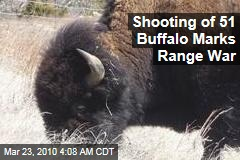 Shooting of 51 Buffalo Marks Range War