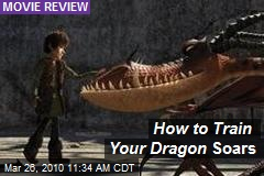 How to Train Your Dragon Soars
