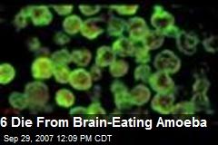 6 Die From Brain-Eating Amoeba