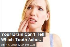 Your Brain Can't Tell Which Tooth Aches