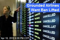 Grounded Airlines Want Ban Lifted