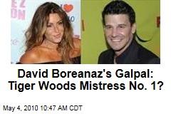 EXCLUSIVE: David Boreanaz's FIRST Affair Was With Tiger Woods' Mistress! | RadarOnline.com