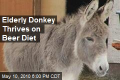 Elderly Donkey Thrives on Beer Diet
