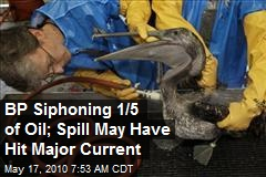 BP Siphoning 1/5 of Oil; Spill May Have Hit Major Current
