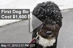 First Dog Bo Cost $1,600