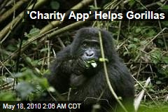 'Charity App' Helps Gorillas