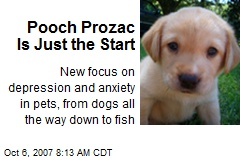 Pooch Prozac Is Just the Start