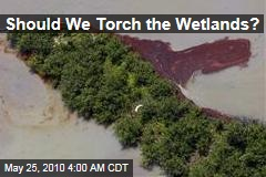 Should We Torch the Wetlands?