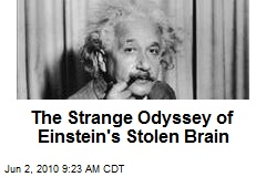 The Strange Odyssey of Einstein's Stolen Brain