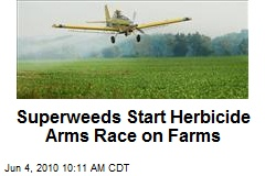 Superweeds Start Herbicide Arms Race on Farms