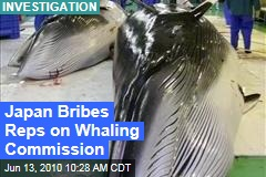Japan Bribes Reps on Whaling Commission