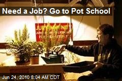 Need a Job? Go to Pot School