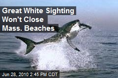 Great White Sighting Won't Close Mass. Beaches