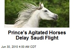 Prince's Agitated Horses Delay Saudi Flight