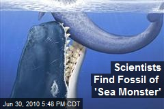 Scientists Find Fossil of 'Sea Monster'