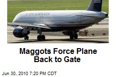 Maggots Force Plane Back to Gate