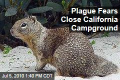 Plague Fears Close California Campground