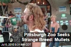 Pittsburgh Zoo Seeks Strange Breed: Mullets
