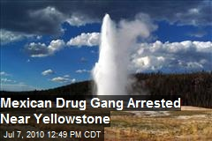 Mexican Drug Gang Arrested Near Yellowstone