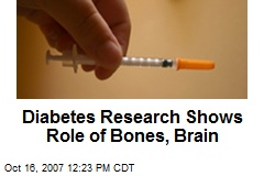 Diabetes Research Shows Role of Bones, Brain