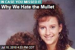 Why We Hate the Mullet