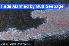 Feds Alarmed by Gulf Seepage