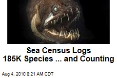 Sea Census Logs 185K Species ... and Counting