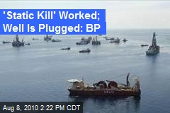 'Static Kill' Worked; Well Is Plugged: BP