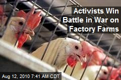 Activists Move to Hobble Factory Farms