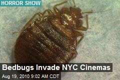 Bedbugs Invade NYC Cinemas