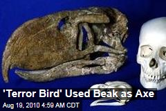 'Terror Bird' Used Beak Like an Axe