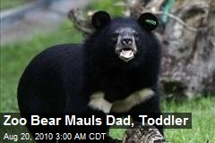 Dad Saves Toddler From Bear at Zoo