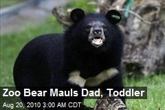 Dad Saves Toddler From Bear at Zoo