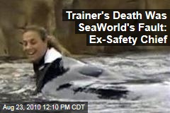 Trainer's Death Was SeaWorld's Fault: Ex-Safety Chief