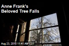 Anne Frank's Beloved Tree Falls