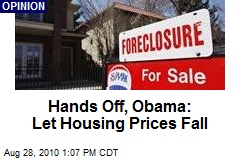 Hands Off, Obama: Let Housing Prices Fall