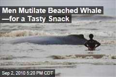 Men Mutilate Beached Whale —for a Tasty Snack